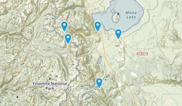 Lee Vining, California Mountain Biking Map
