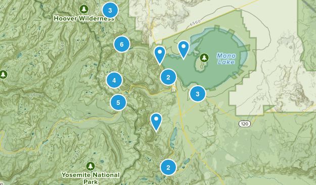 Lee Vining, California Nature Trips Map