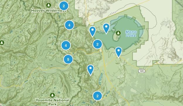 Lee Vining, California Wildlife Map