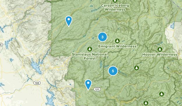 Long Barn, California Forest Map