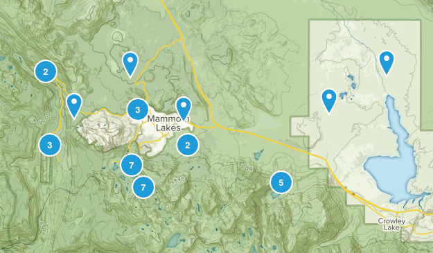 Mammoth Lakes, California Birding Map