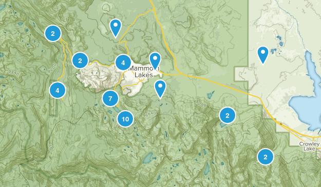 Best Wild Flowers Trails near Mammoth Lakes, California | AllTrails