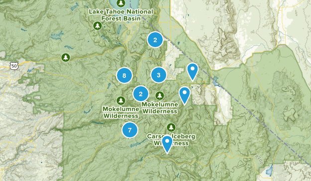 Markleeville, California Birding Map
