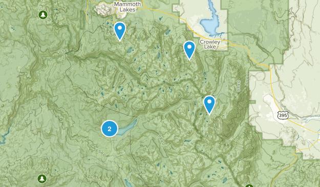 Mono Hot Springs, California Wildlife Map