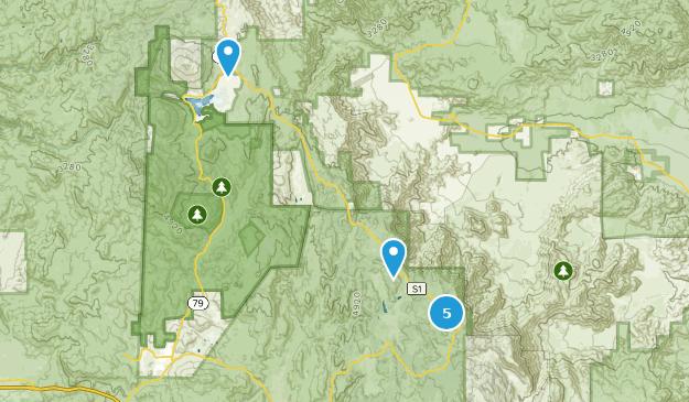 Mount Laguna, California Birding Map