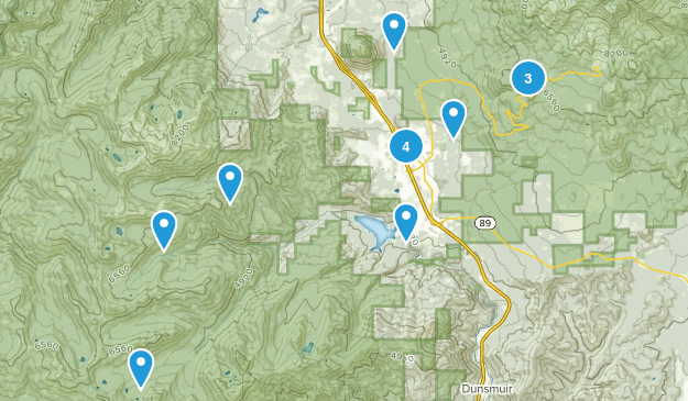 Mount Shasta, California Dogs On Leash Map