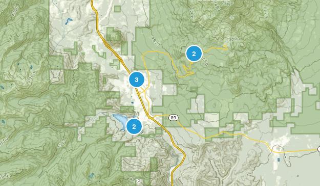 Mount Shasta, California Kid Friendly Map
