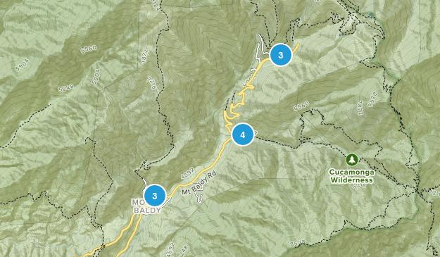 Mt Baldy, California Dogs On Leash Map