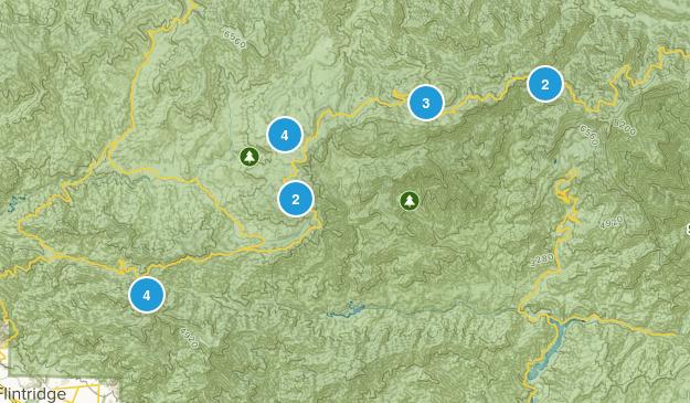 Mt Wilson, California Dogs On Leash Map