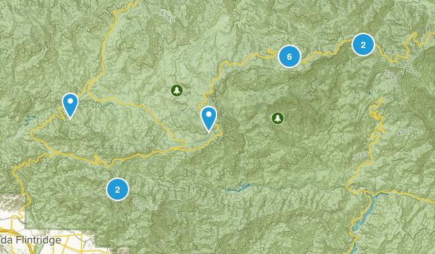 Mt Wilson, California Nature Trips Map