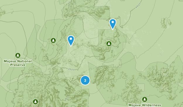 Nipton, California Dogs On Leash Map