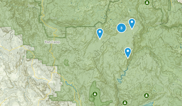 Oakhurst, California Dog Friendly Map