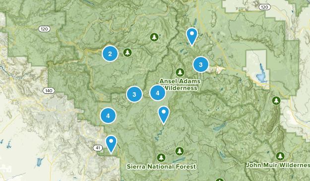 Oakhurst, California Wild Flowers Map