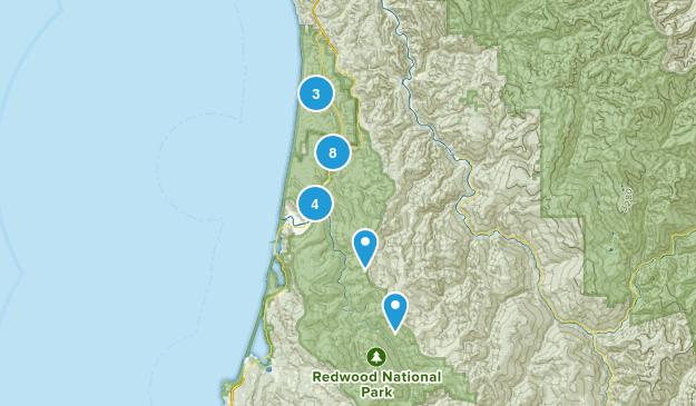 Orick, California Wild Flowers Map