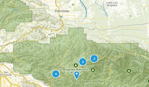 Best Forest Trails near Palmdale, California | AllTrails