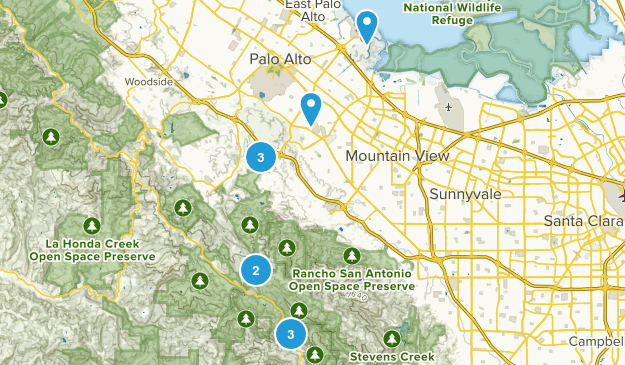 Palo Alto, California Wild Flowers Map