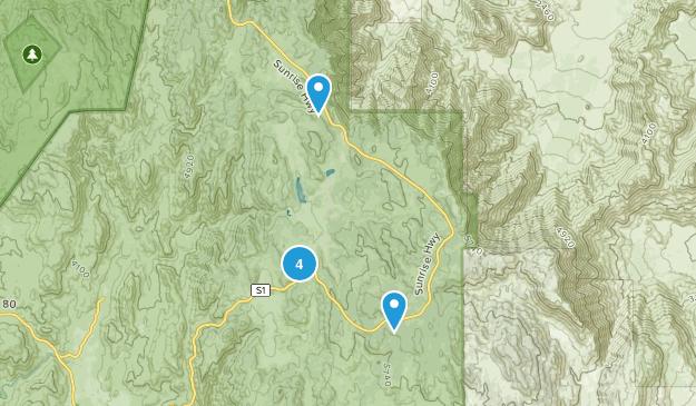 Pine Valley, California Lake Map