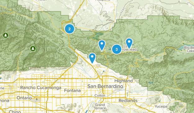 San Bernardino, California Forest Map