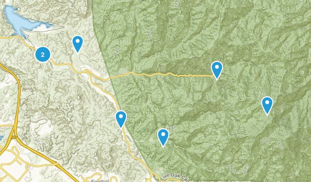 Silverado, California Wild Flowers Map