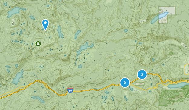 Soda Springs, California Dogs On Leash Map
