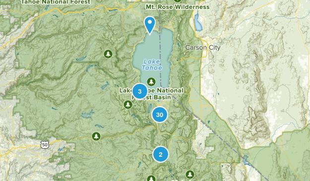South Lake Tahoe, California Wild Flowers Map