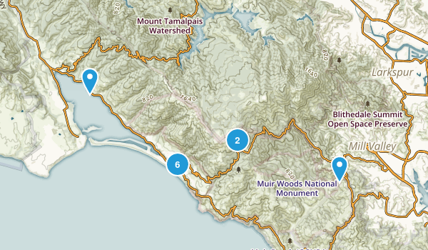 Stinson Beach, California Forest Map