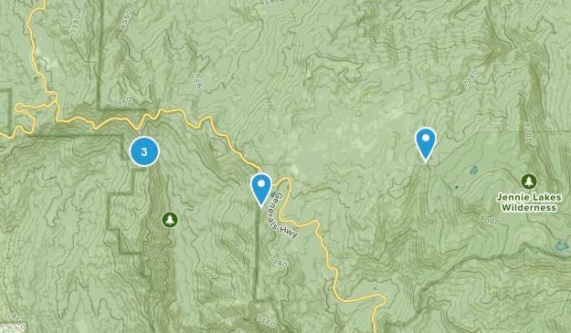 Stony Creek Village, California Forest Map