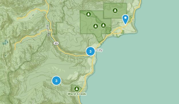 Tahoe City, California Dogs On Leash Map