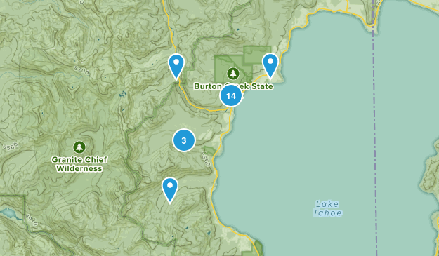 Tahoe City, California Forest Map