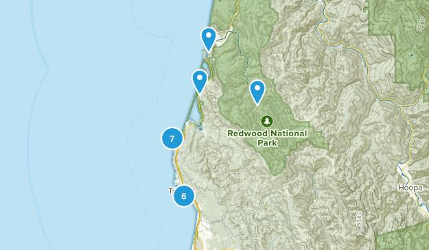 Trinidad, California Birding Map