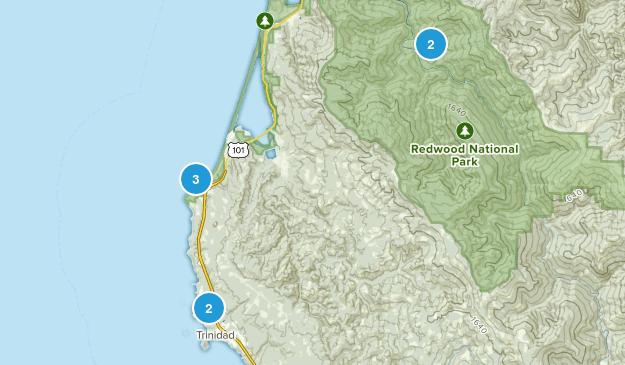 Trinidad, California Forest Map