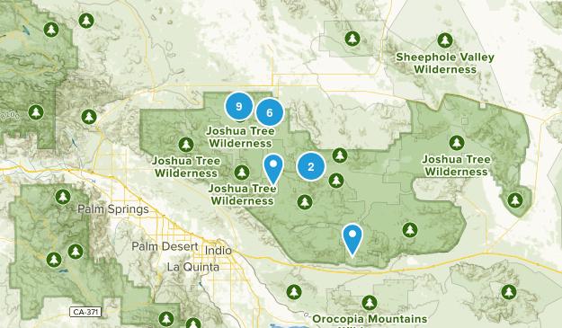 Twentynine Palms, California Birding Map