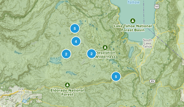 Twin Bridges, California Forest Map