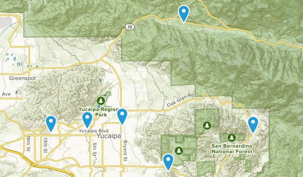 Yucaipa, California Forest Map