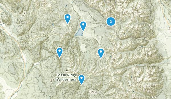 Almont, Colorado Walking Map