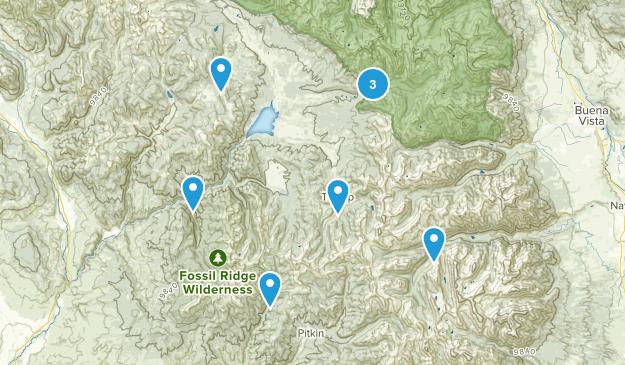 Almont, Colorado Wildlife Map