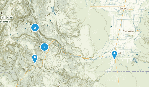 Antonito, Colorado Forest Map