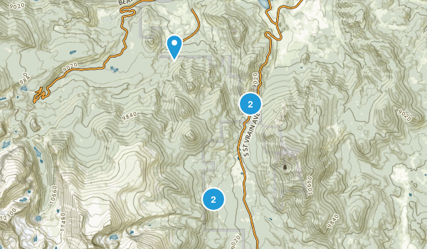 Beaver Point, Colorado Forest Map