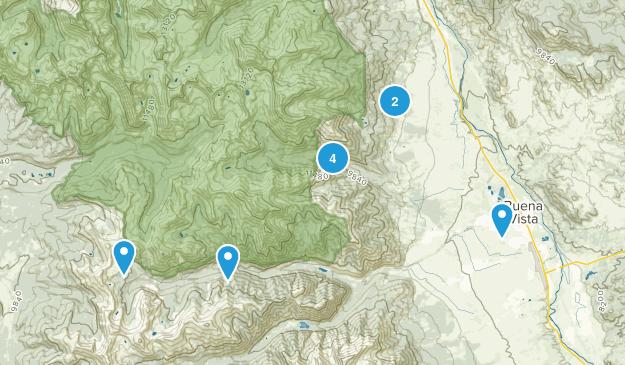 Buena Vista, Colorado Lake Map