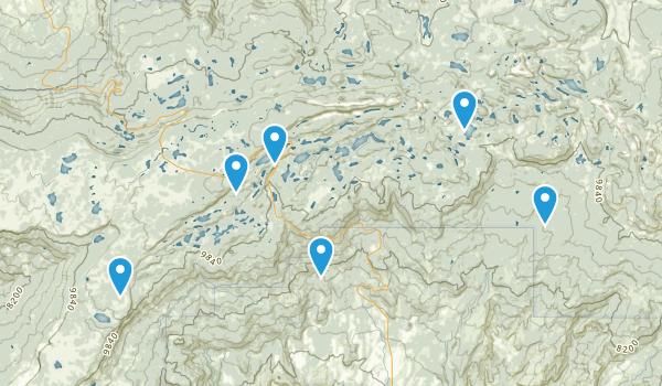 Cedaredge, Colorado Hiking Map