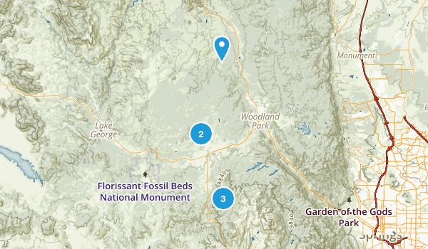Divide, Colorado Dog Friendly Map