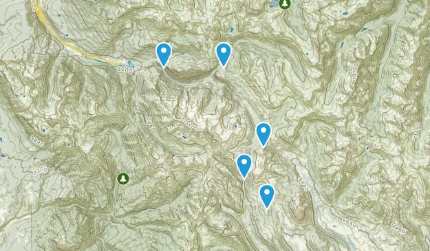Elkton, Colorado Walking Map