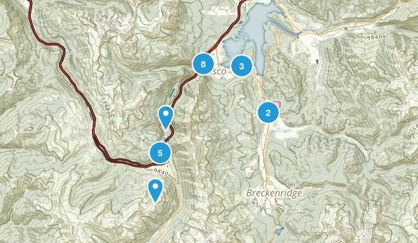 Frisco, Colorado Forest Map
