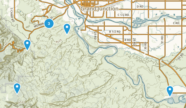 Grand Junction, Colorado Forest Map