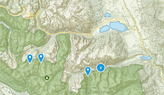 Granite, Colorado Birding Map