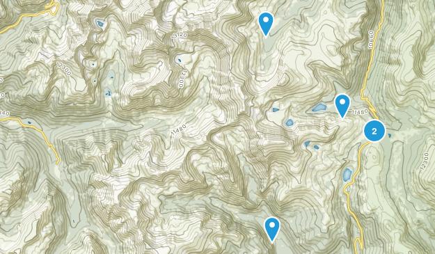 Montezuma, Colorado Birding Map