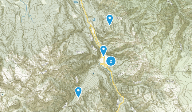 Ouray, Colorado Dogs On Leash Map