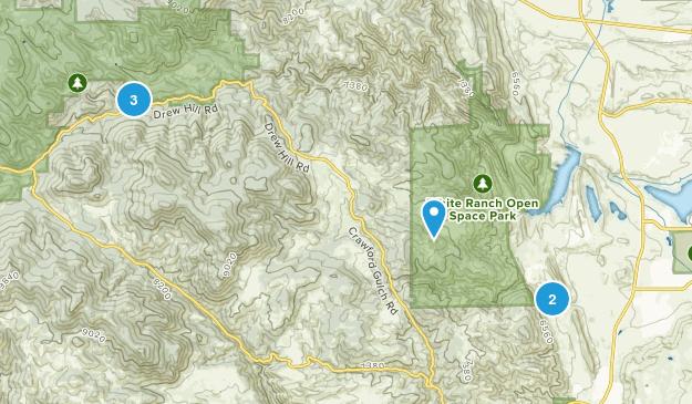Rocky, Colorado Dogs On Leash Map