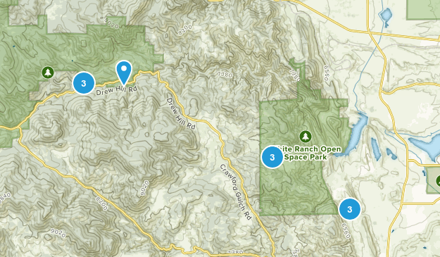 Rocky, Colorado Forest Map
