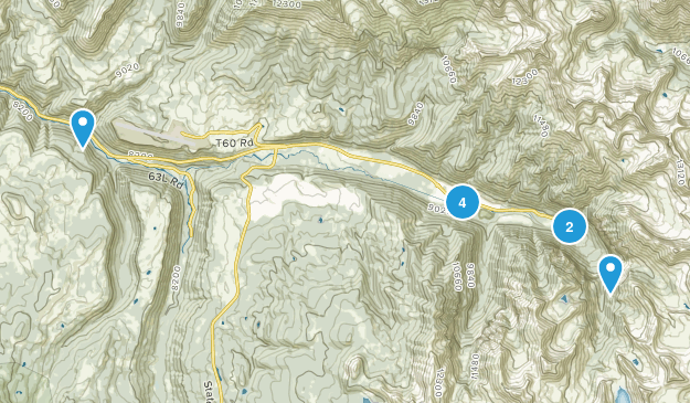 Telluride, Colorado Dogs On Leash Map